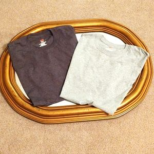(2 for $4) BNWOT Hanes Gray Tees Size M